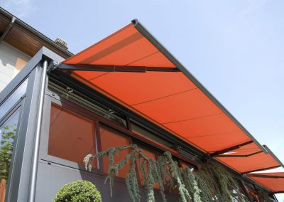 Box awning / motorized